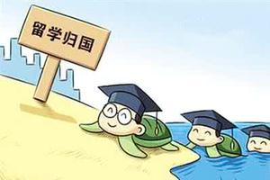 """2016年深圳引进""""海归""""10509人"""